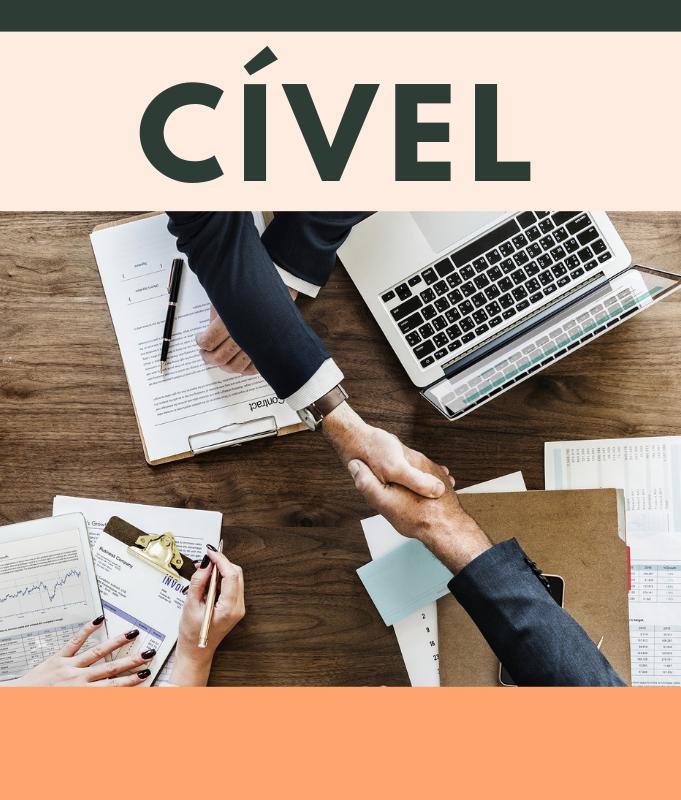 Direito Civil - Martucci Melillo